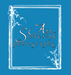Ann Stoverink Photography